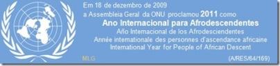 Ano Internacional afrodescendente