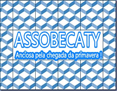 ASSOBECATY ANCIOSA Primaera
